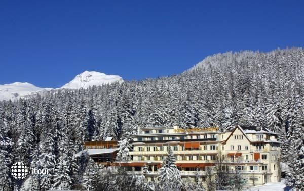 Alpina Et Savoy 2