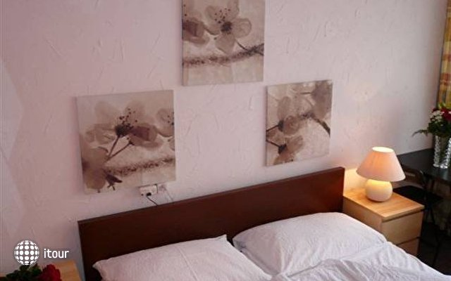 Hotel Alexander 8