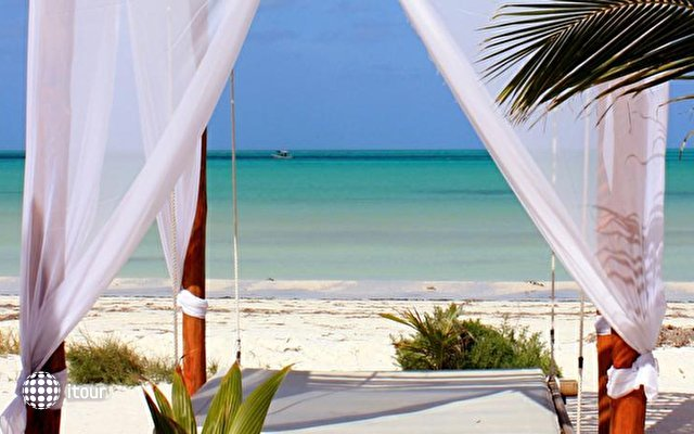 Holbox Dream 10