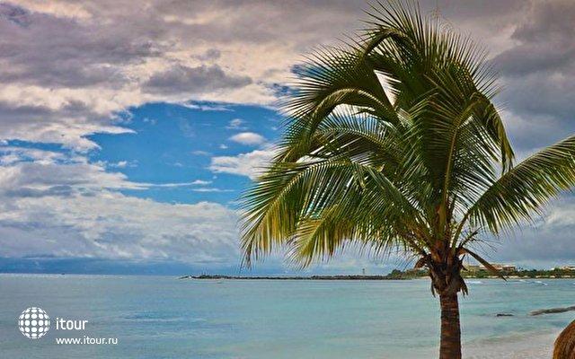 Omni Puerto Aventuras Beach Resort 5