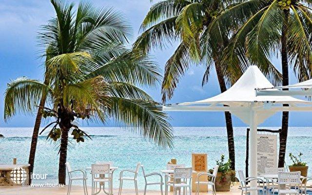 Omni Puerto Aventuras Beach Resort 6