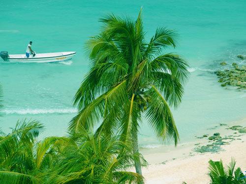 Be Live Viva Beach 4