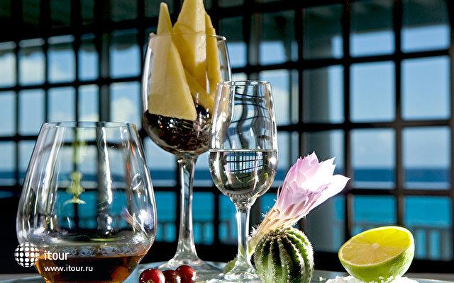 Sandos Cancun Luxury Experience Resort 6