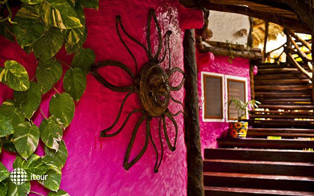 Casa Las Tortugas 3