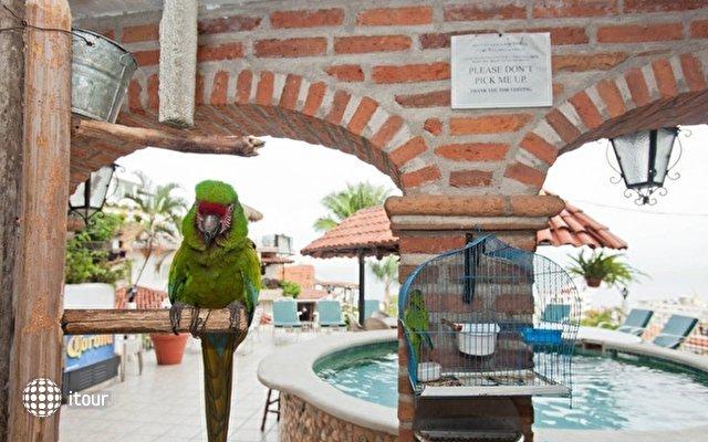 Casa Anita & Corona Del Mar 8