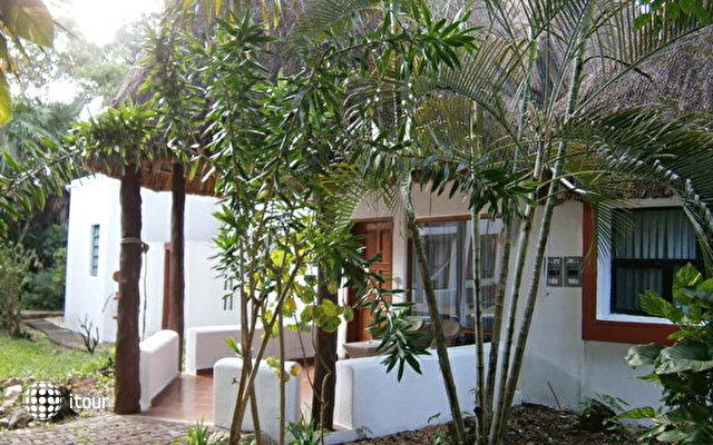 Las Palapas Hotel 5