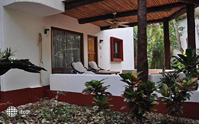 Las Palapas Hotel 6
