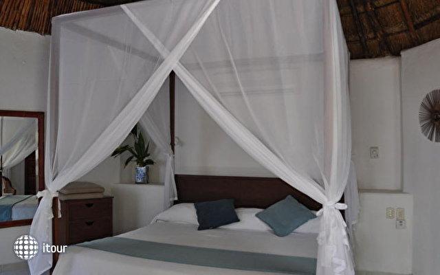 Las Palapas Hotel 7