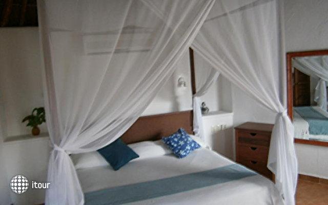 Las Palapas Hotel 8