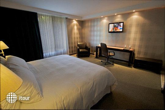 Gobernador Hotel 6