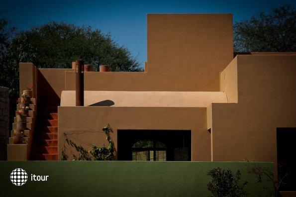 Casa De Aves 8