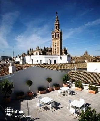 Fontecruz Sevilla 9
