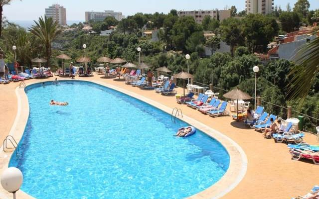Canarios Park 3