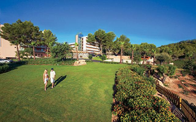 Palmira Paradise 7