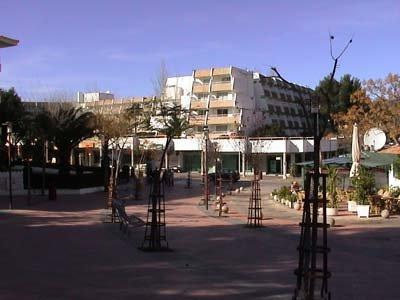 Rosa Del Mar 8