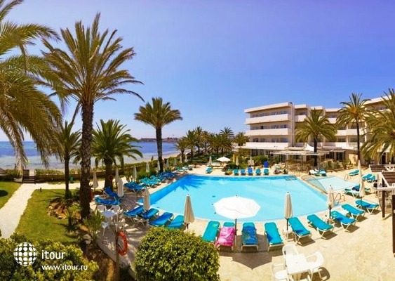 Acorn Playa Real 2