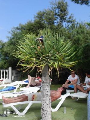 Azuline Club Punta Arabi 7