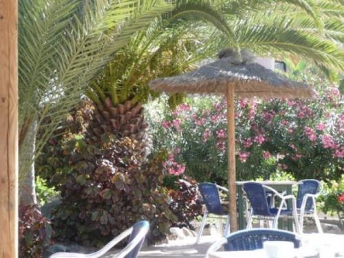 Fuerteventura Playa 6