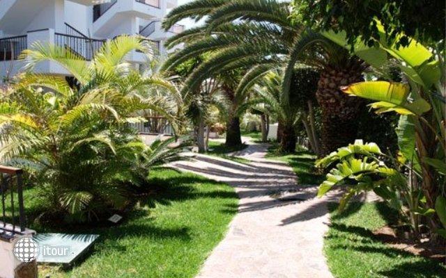 Paradise Park 15