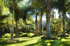 Hacienda San Jorge 9