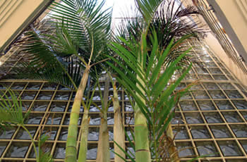 Anoreta Apartments 8