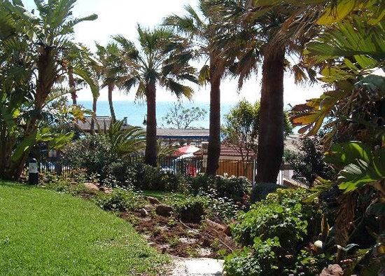 Sol Elite Aloha Puerto 15