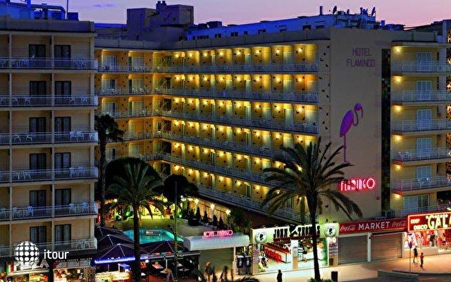 Gran Hotel Flamingo 1