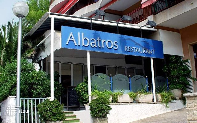 Albatros 10