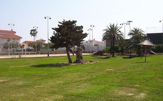 Daurada Park 5