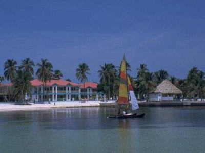 Banyan Bay 1