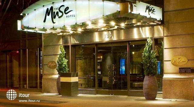 The Muse 7
