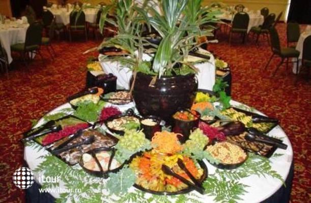 Holiday Inn Grand Island (buffalo Niagara) 8