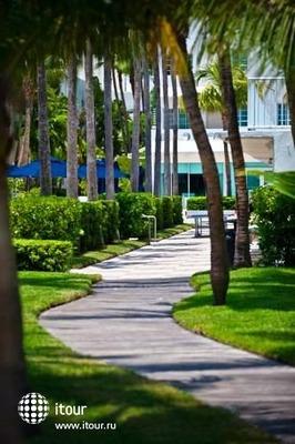 Surfcomber Miami South Beach, A Kimpton Hotel 9