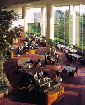 Hilton Tokyo Bay 9