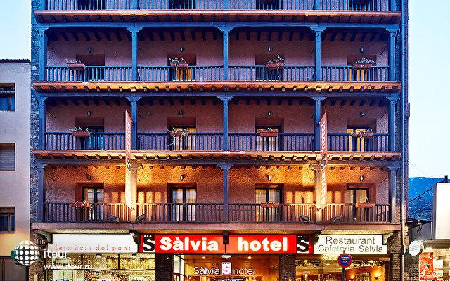 Salvia D'or 2
