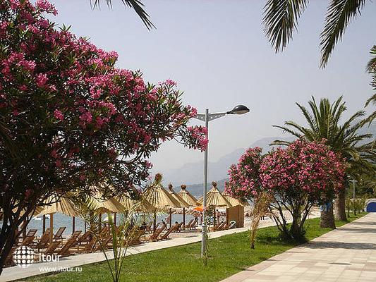 Marina Villa  1