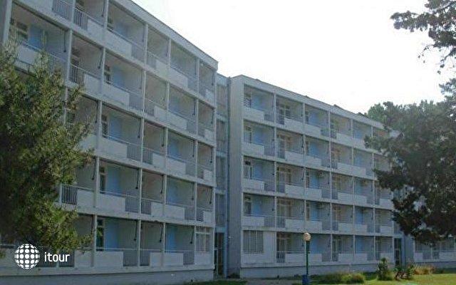 Bellevue Borik I 1