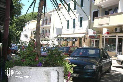 Montenegrino 1