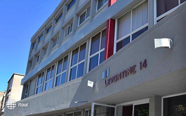 Levontine 14 8