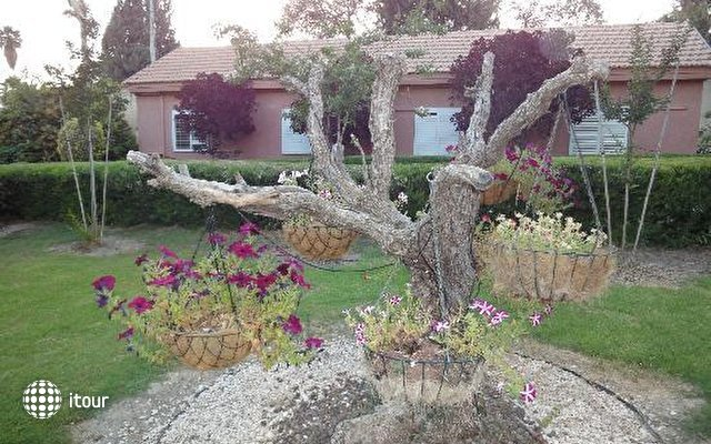 Sha'ar Hagolan Kibbutz Country Lodging 4