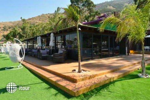 Cocohut Resort 1
