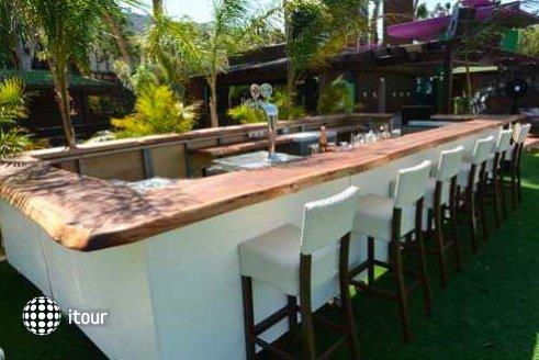 Cocohut Resort 7