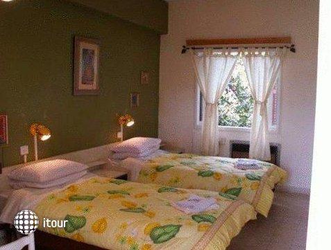 Safed Inn 4