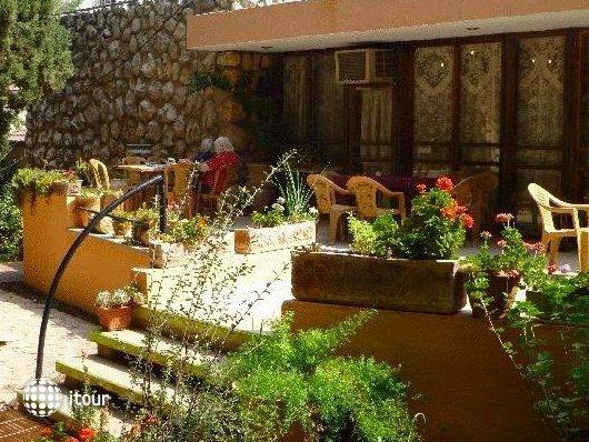 Safed Inn 6