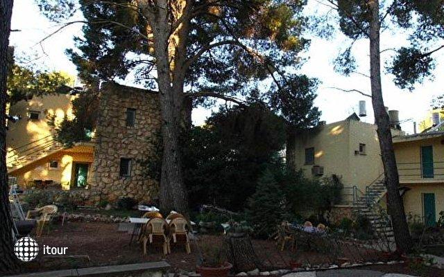 Safed Inn 9