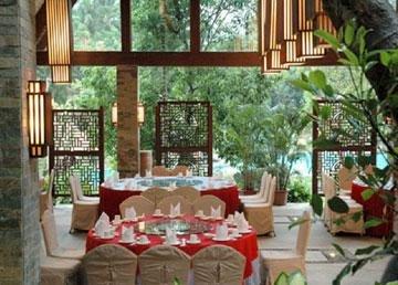 Paradise Rainforest Spa & Resort 7