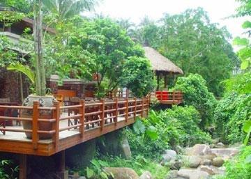 Paradise Rainforest Spa & Resort 8