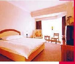 Rose Hotel 1