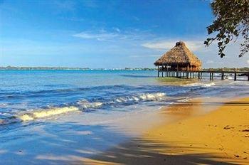 Playa Tortuga 5