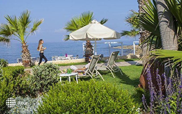 Aquamare Beach Hotel & Spa 10